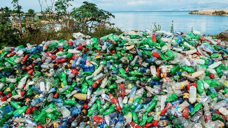 Scientists Discover Bacterium That Thrives On Toxic Plastic Waste
