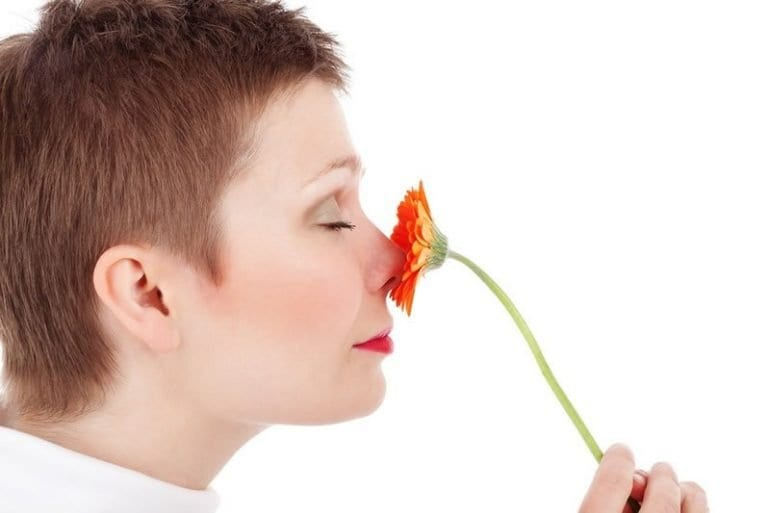 Research Says We Smell in Stereo: What Does That Mean?