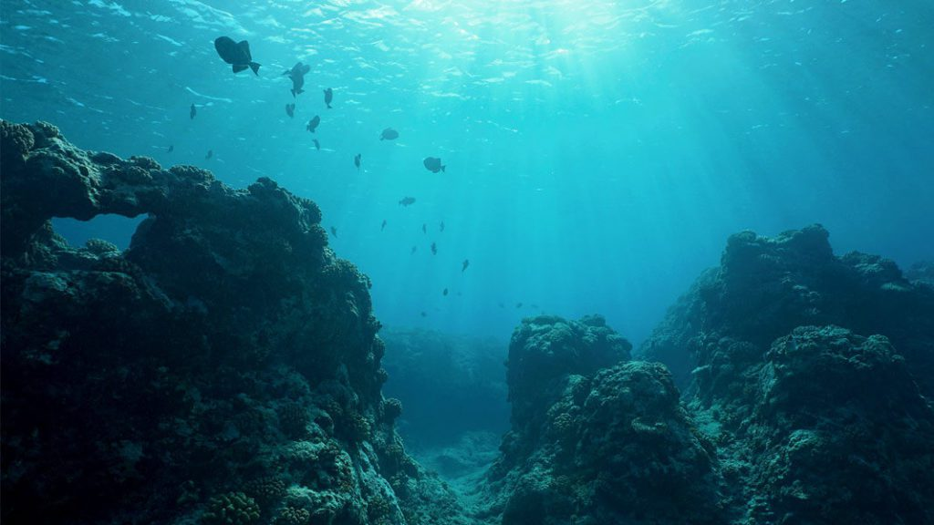 The microbes were found at the seabed of the pacific ocean.