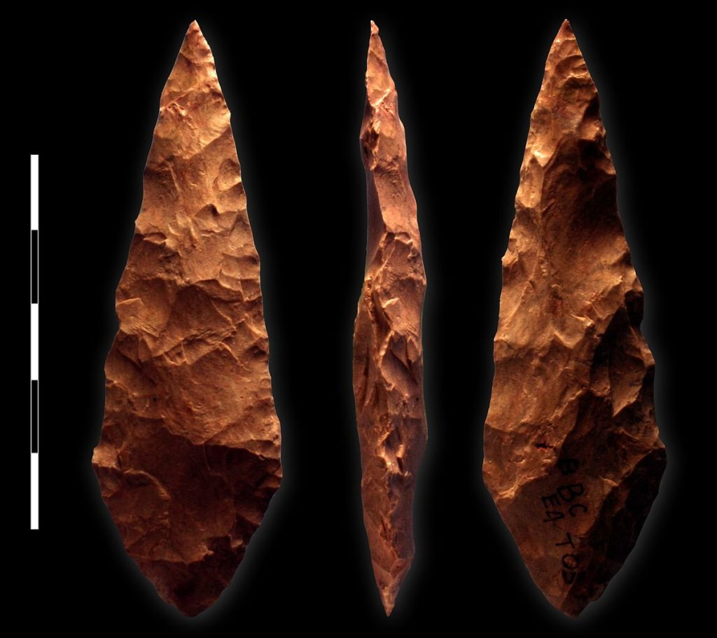 Early humans in the middle stone age used multiple types of tools.
