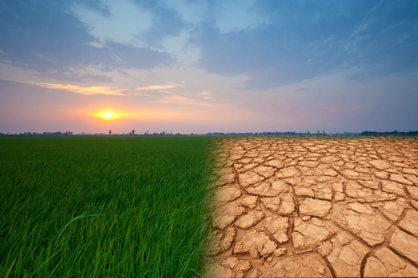A picture depicting Climate Change