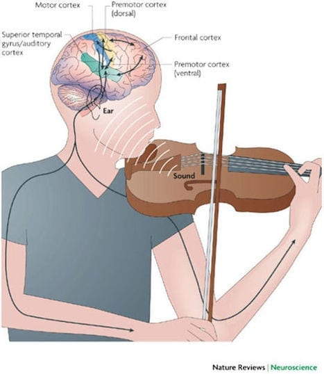 5 Interesting Facts On The Influence Of Music On The Human Psyche