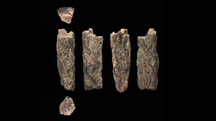 Stunning Discoveries Of A Neanderthal Hybrid Found In A Siberian Cave